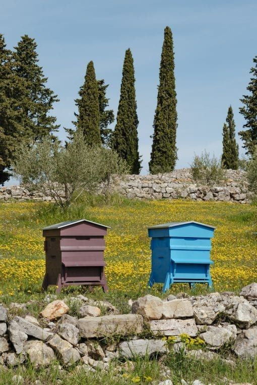 Martine Beehives